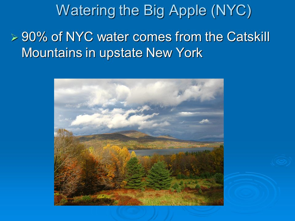 Watering the Big Apple (NYC)