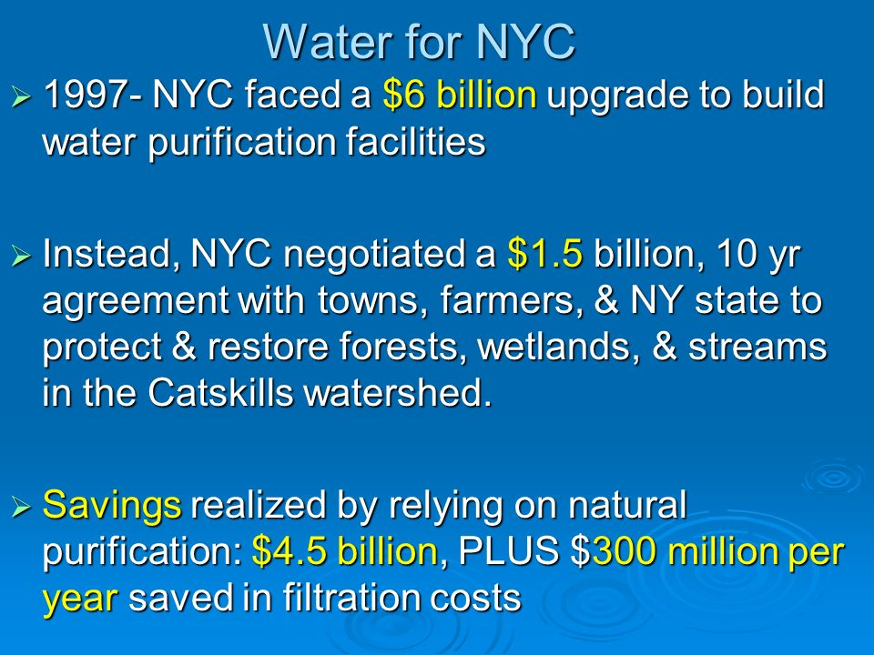 Water for NYC NYC faced a $6 billion upgrade to build water purification facilities.