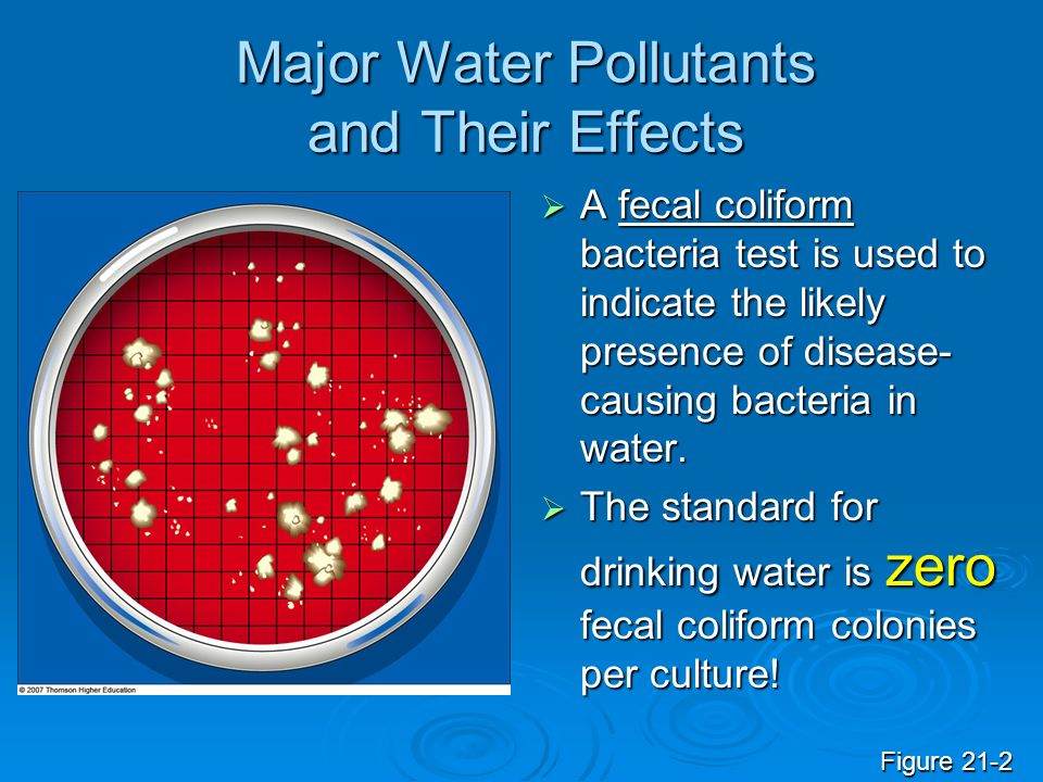 Major Water Pollutants and Their Effects
