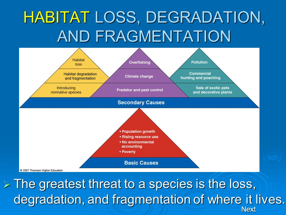 HABITAT LOSS, DEGRADATION, AND FRAGMENTATION