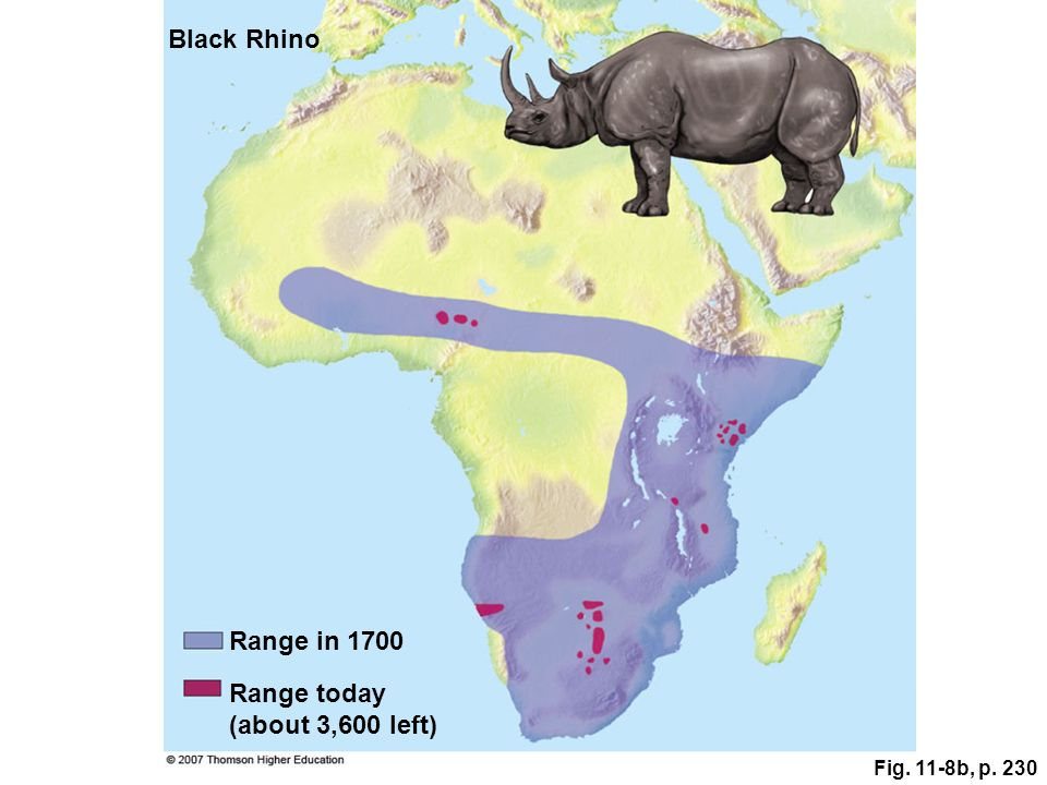 Black Rhino Range in 1700 Range today (about 3,600 left)