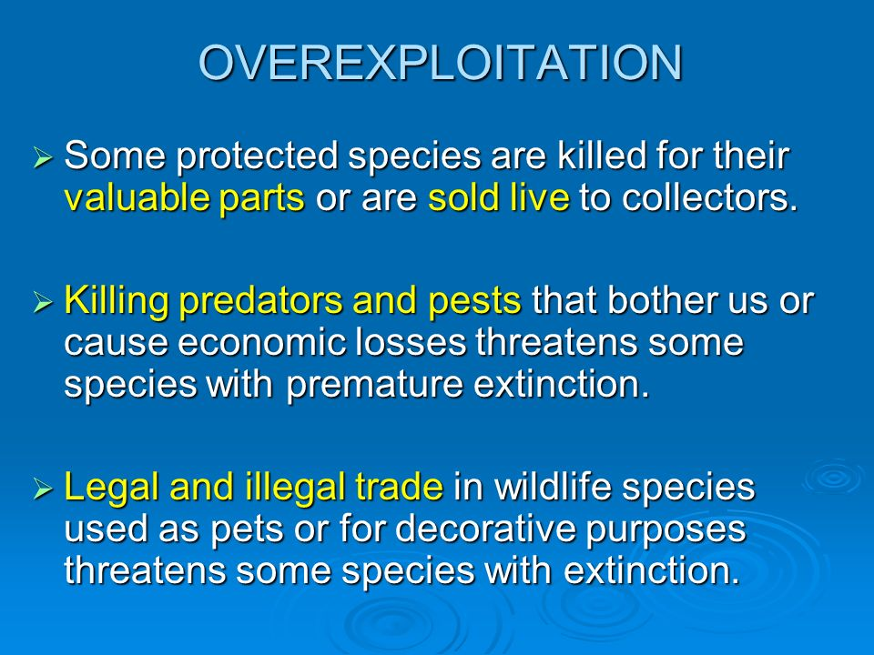 OVEREXPLOITATION Some protected species are killed for their valuable parts or are sold live to collectors.