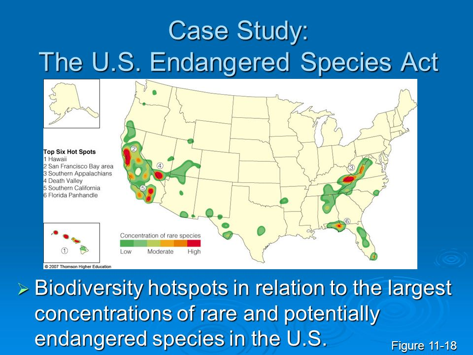Case Study: The U.S. Endangered Species Act
