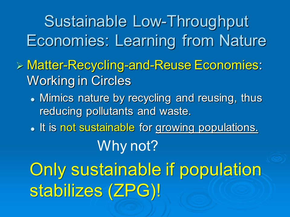 Sustainable Low-Throughput Economies: Learning from Nature