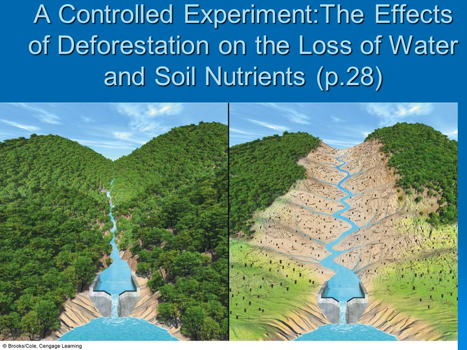 A Controlled Experiment:The Effects of Deforestation on the Loss of Water and Soil Nutrients (p.28)