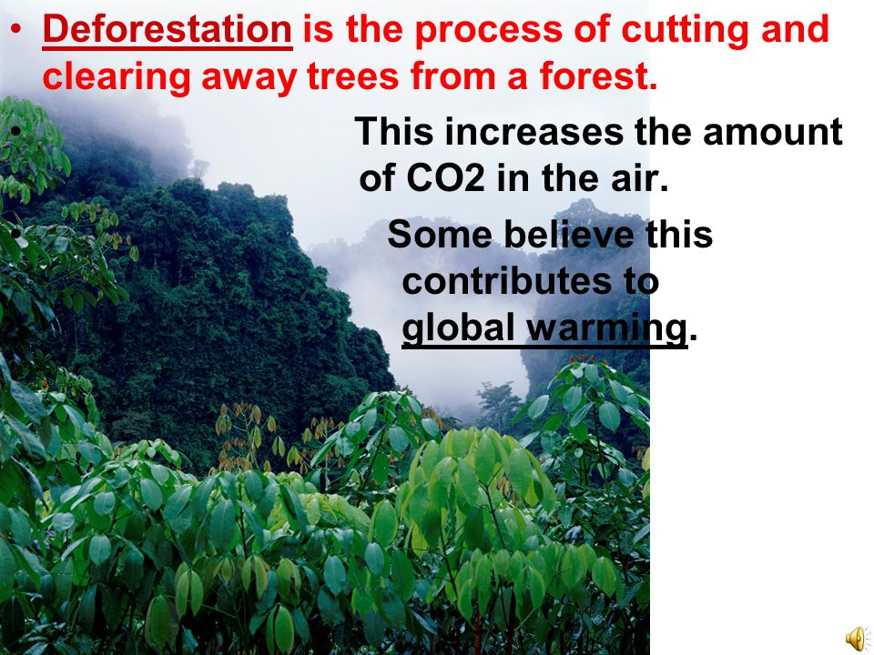 Deforestation is the process of cutting and clearing away trees from a forest.