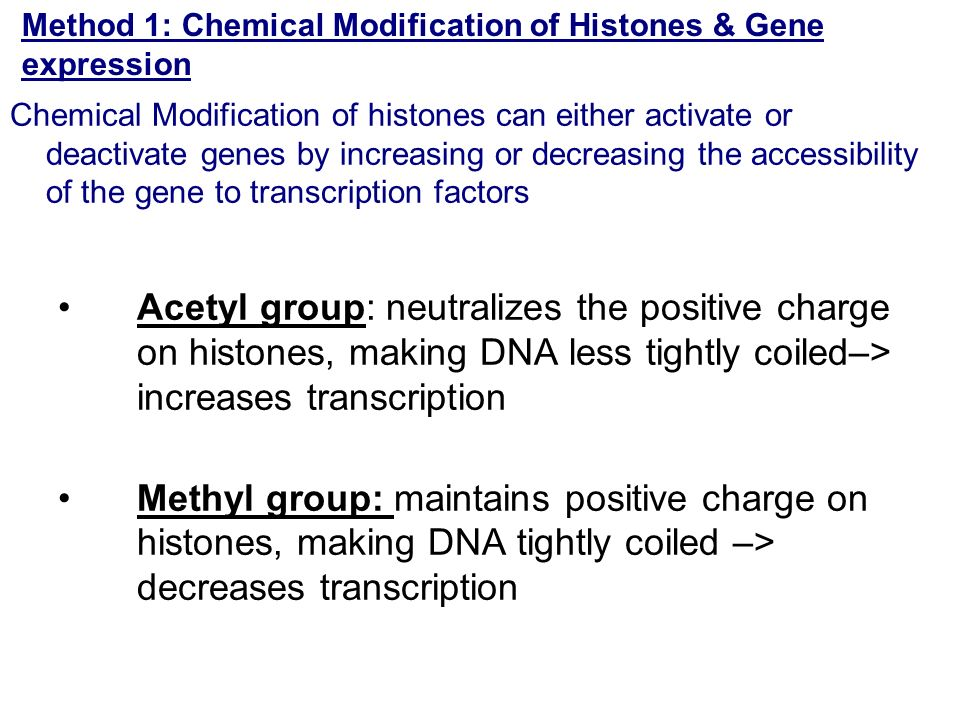 Method 1: Chemical Modification of Histones & Gene expression