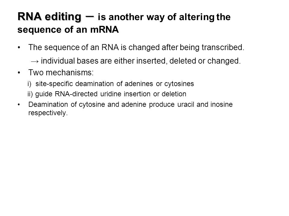 Nucleic acid sequence