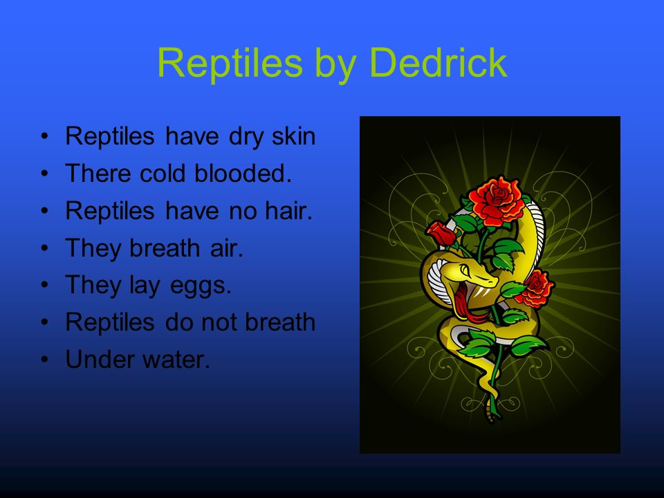 Reptiles by Dedrick Reptiles have dry skin There cold blooded.