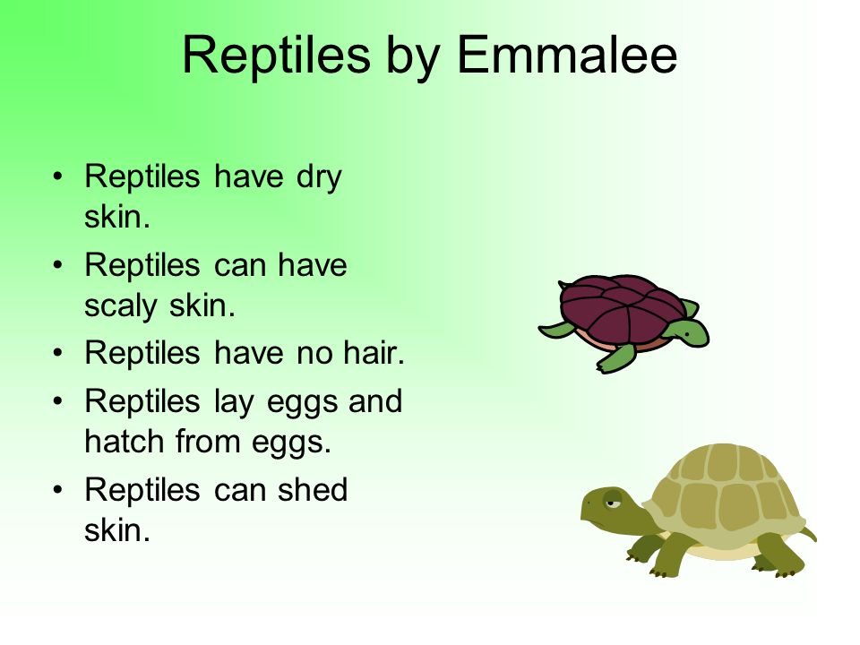 Reptiles by Emmalee Reptiles have dry skin.