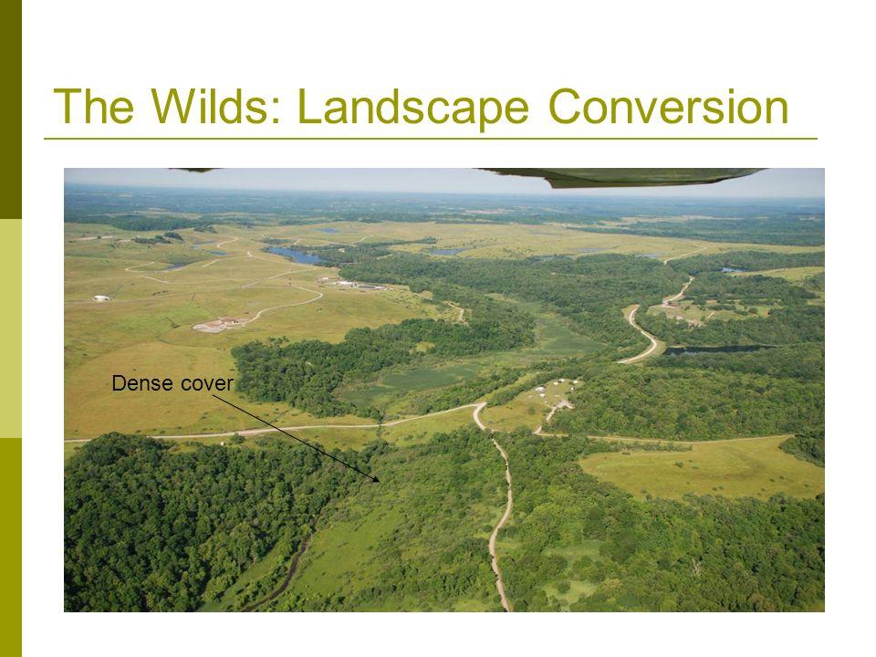 The Wilds: Landscape Conversion