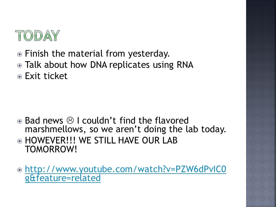 do now what is the job of dna what does dna look like ppt