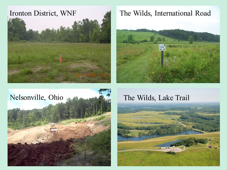 Ironton District, WNF The Wilds, International Road Nelsonville, Ohio The Wilds, Lake Trail