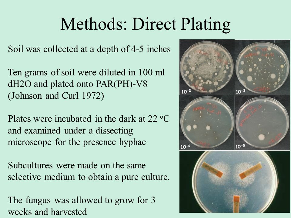 Methods: Direct Plating