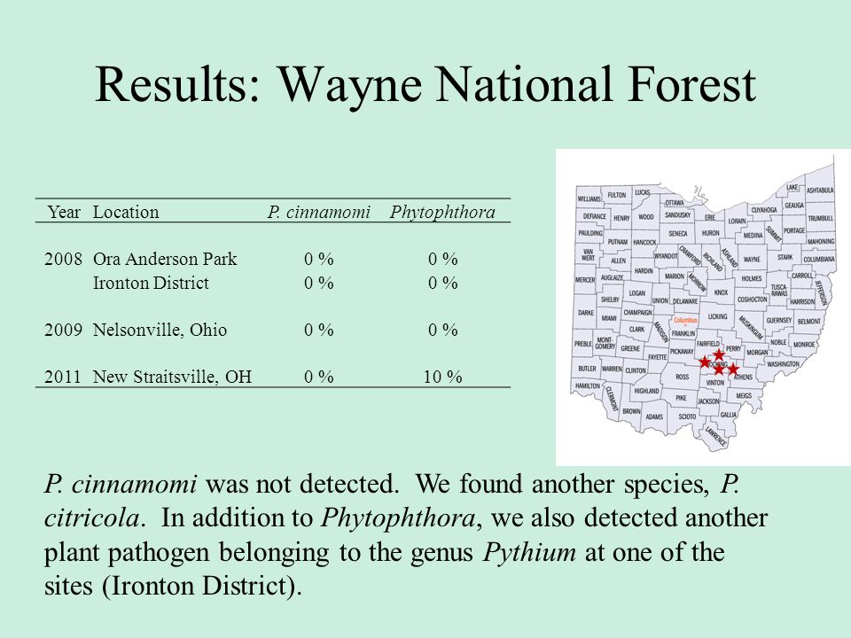 Results: Wayne National Forest