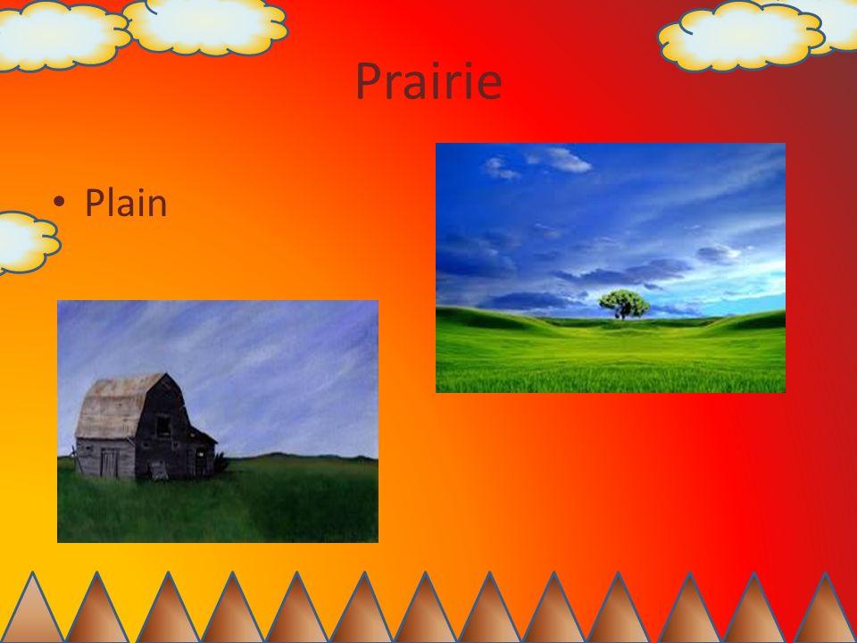 Prairie Plain