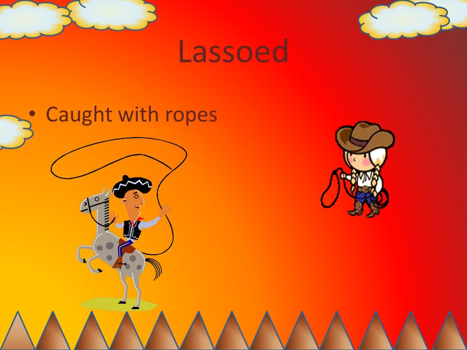Lassoed Caught with ropes