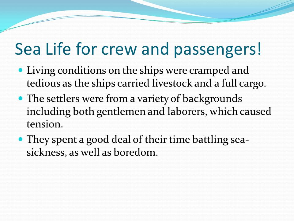 Sea Life for crew and passengers!
