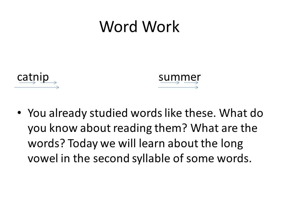 Word Work catnip summer
