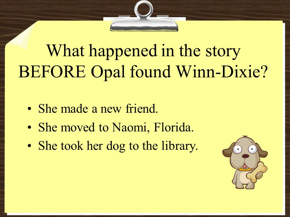 What happened in the story BEFORE Opal found Winn-Dixie