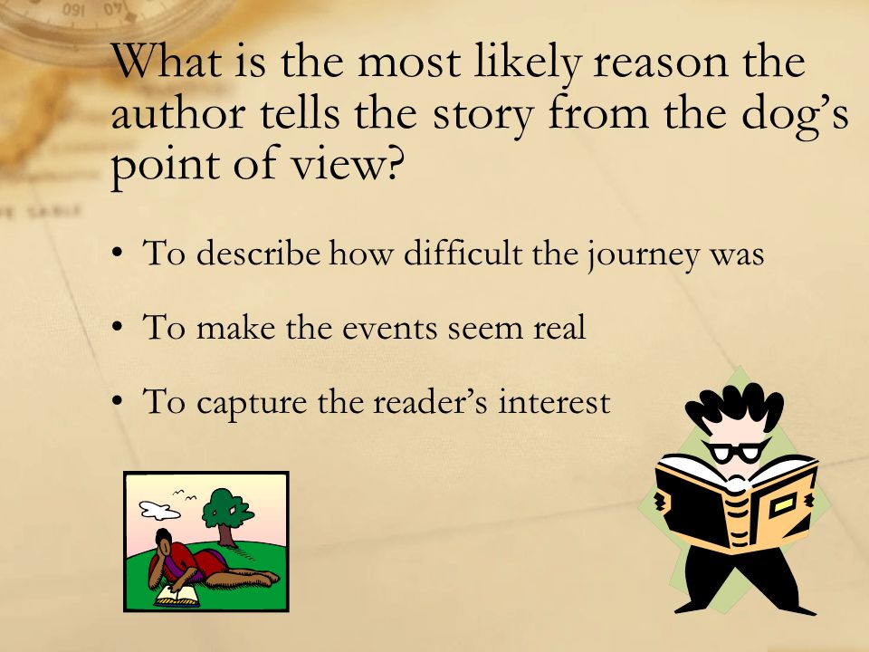 What is the most likely reason the author tells the story from the dog's point of view