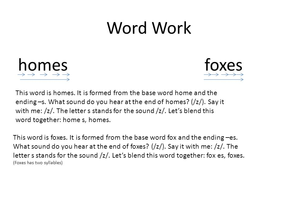 Word Work homes foxes.