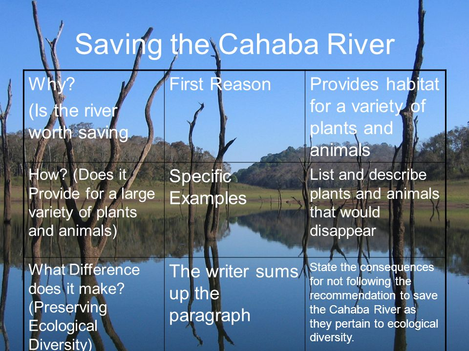 Saving the Cahaba River
