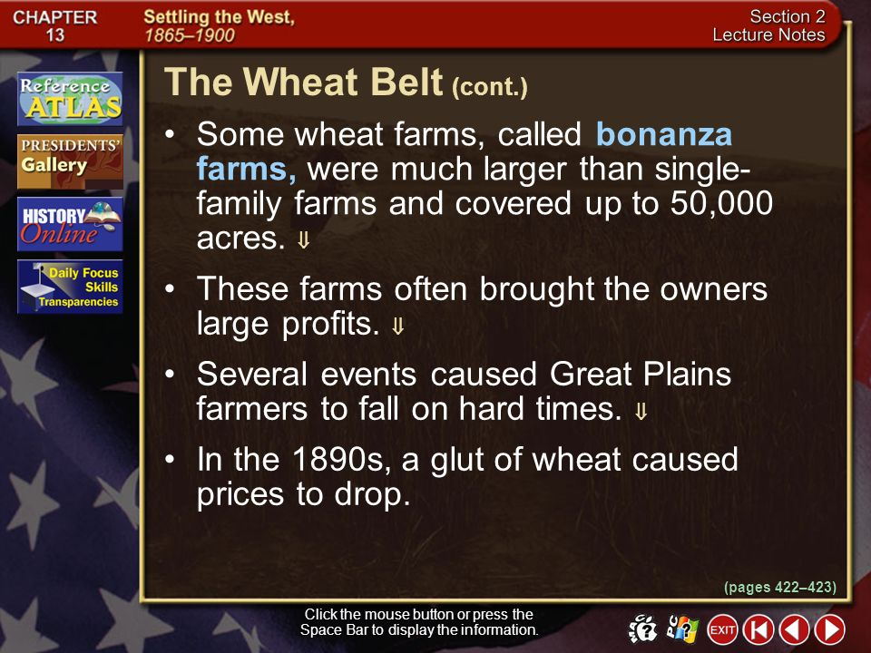 The Wheat Belt (cont.) Some wheat farms, called bonanza farms, were much larger than single-family farms and covered up to 50,000 acres. 