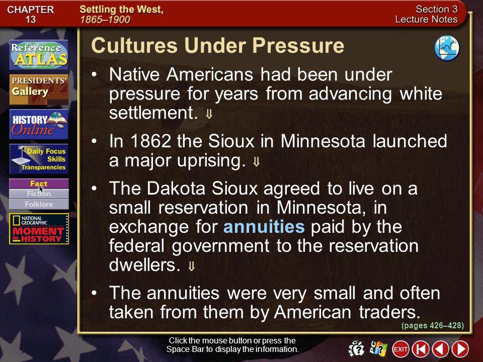 Cultures Under Pressure