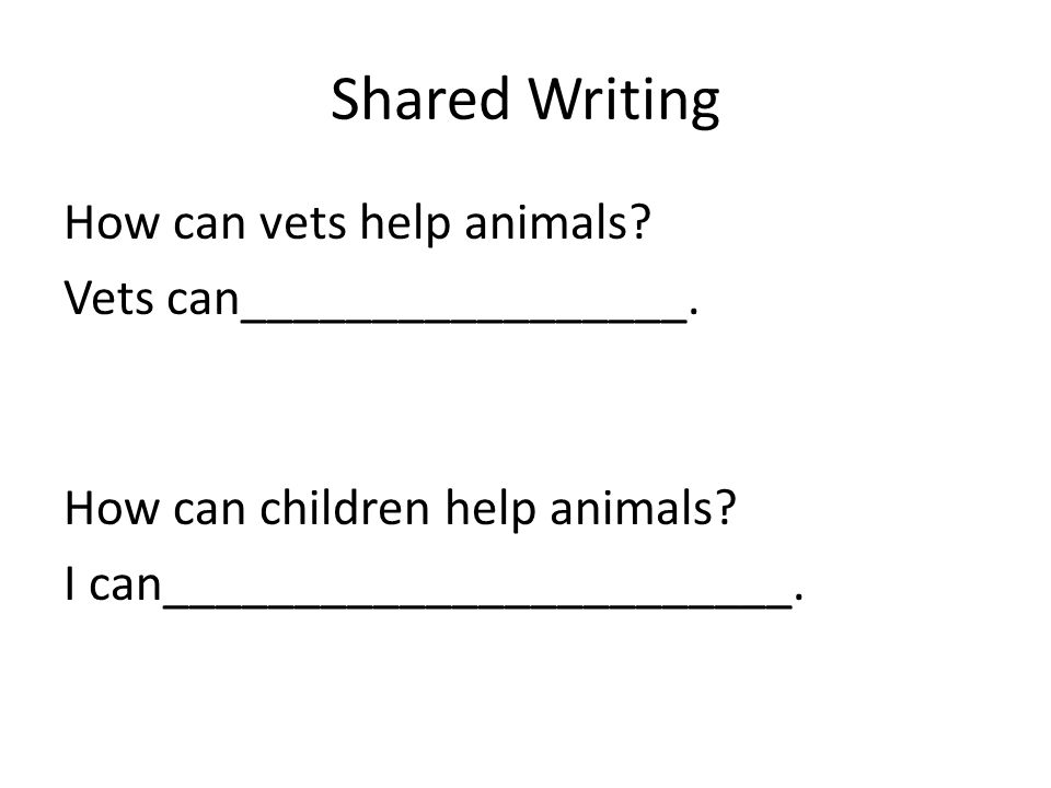 Shared Writing How can vets help animals Vets can_________________.