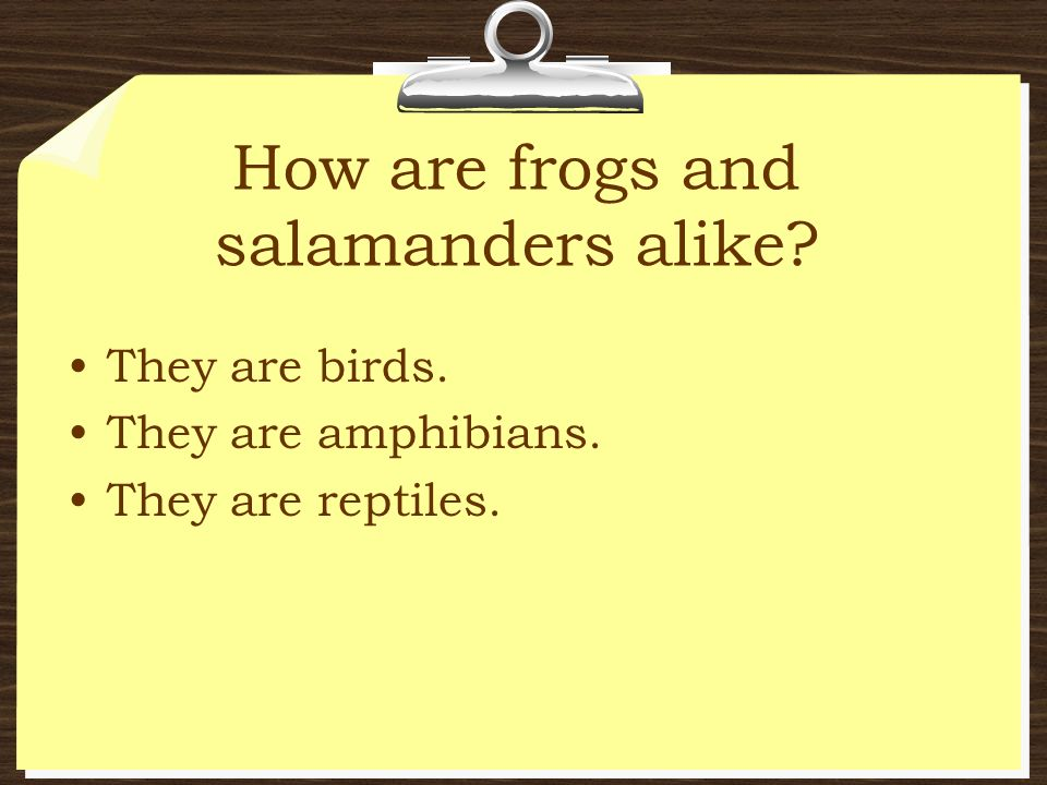 How are frogs and salamanders alike