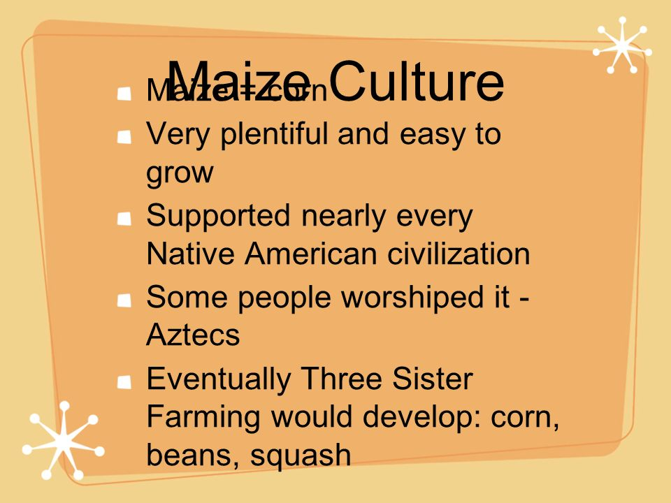 Maize Culture Maize = corn Very plentiful and easy to grow