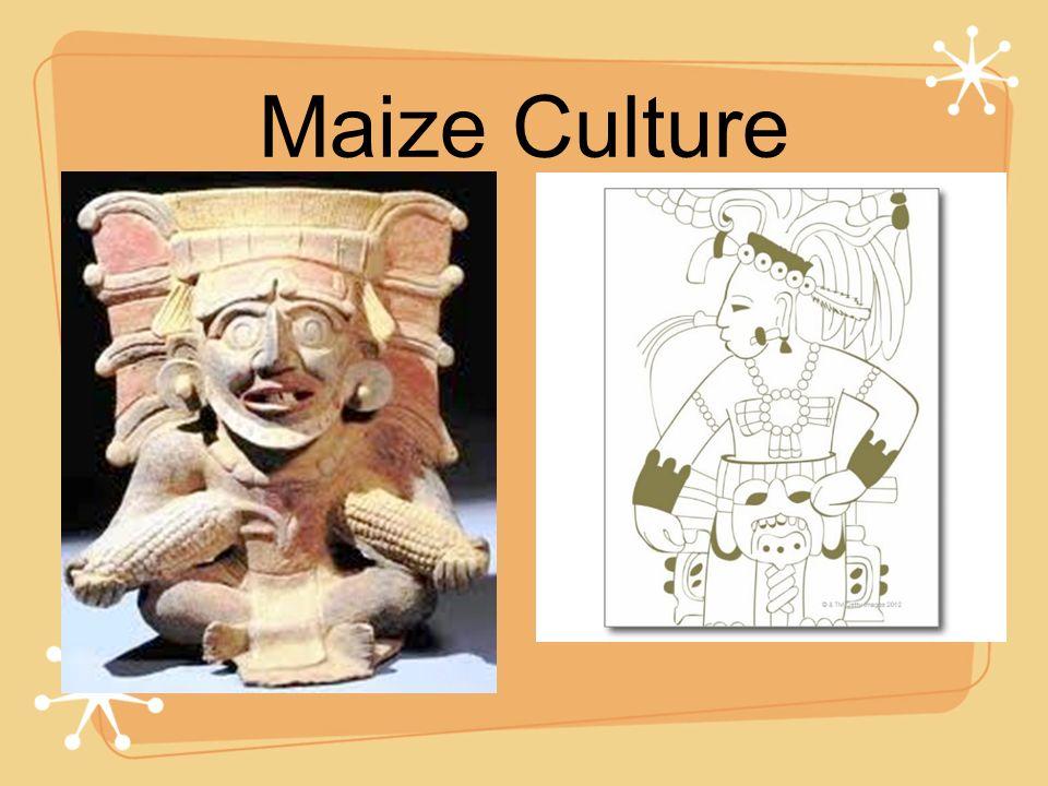 Maize Culture