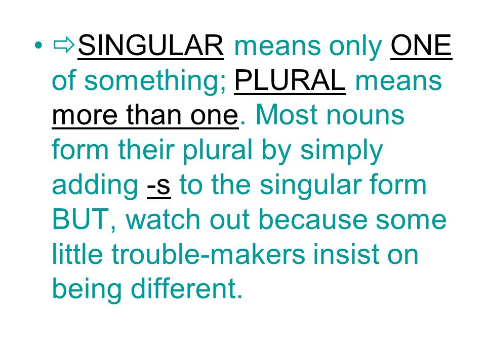 SINGULAR means only ONE of something; PLURAL means more than one