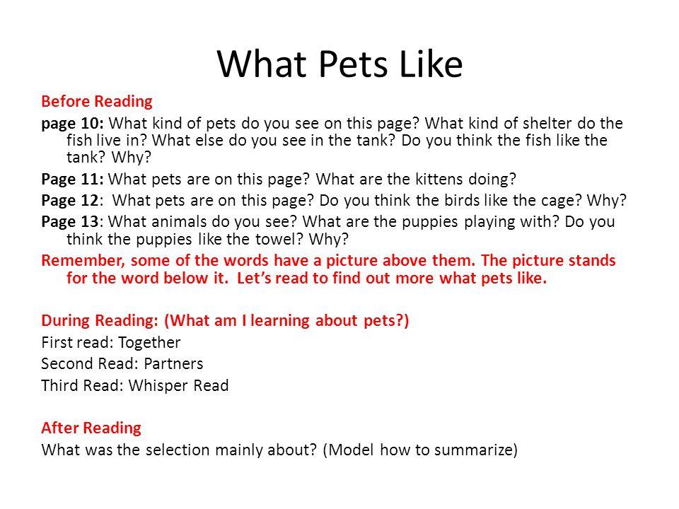 What Pets Like