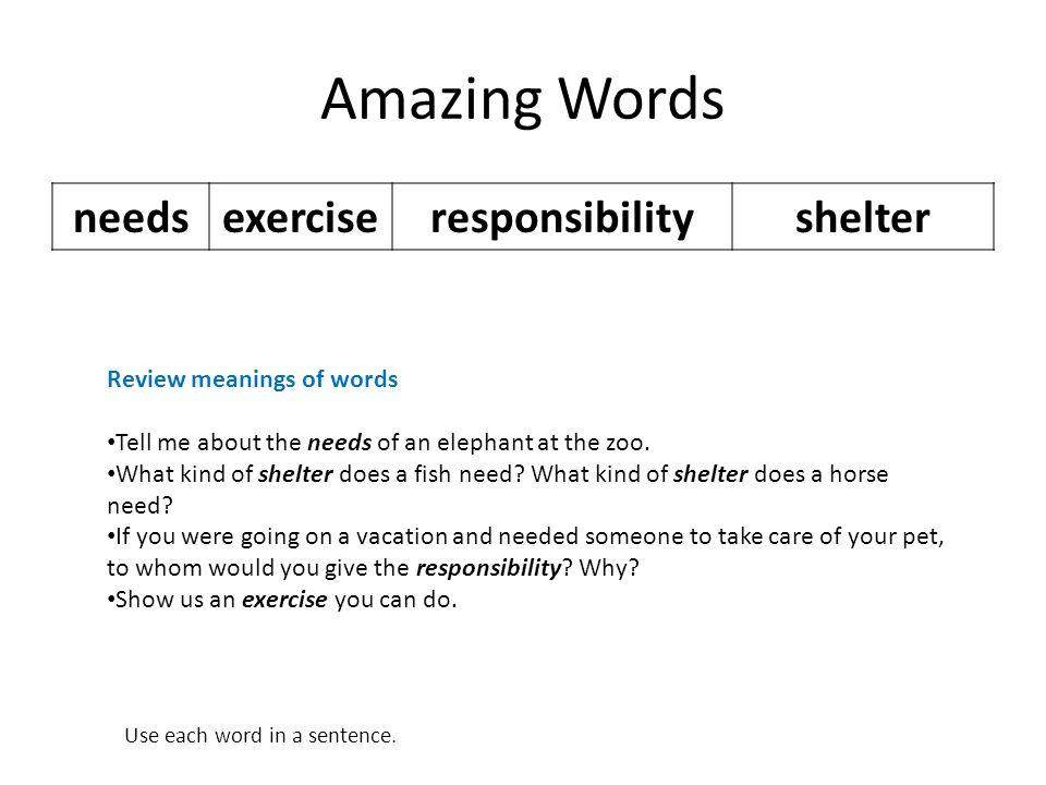 Amazing Words needs exercise responsibility shelter
