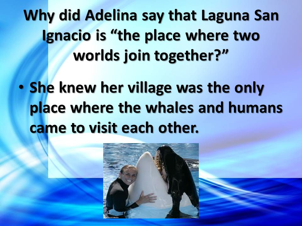 Why did Adelina say that Laguna San Ignacio is the place where two worlds join together