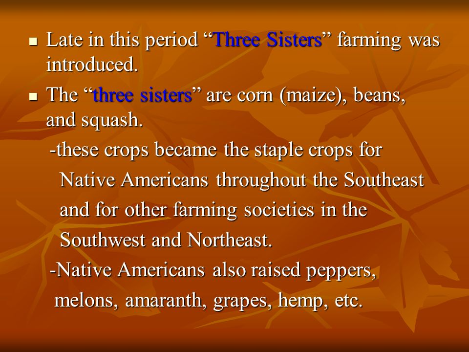 Late in this period Three Sisters farming was introduced.
