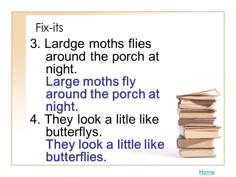 3. Lardge moths flies around the porch at night.