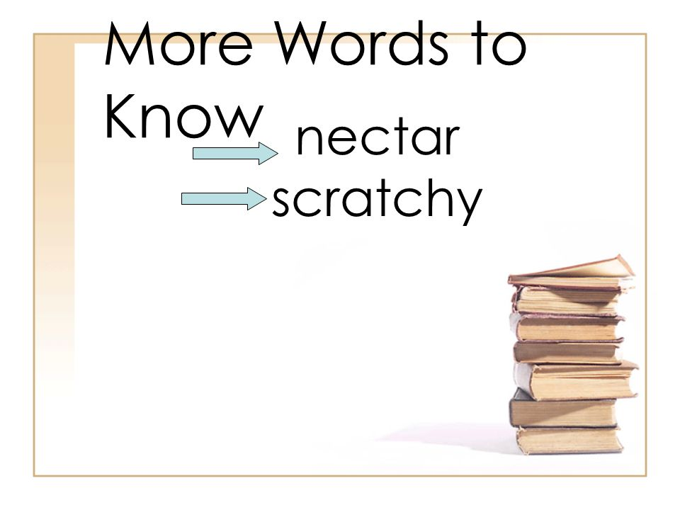 More Words to Know nectar scratchy