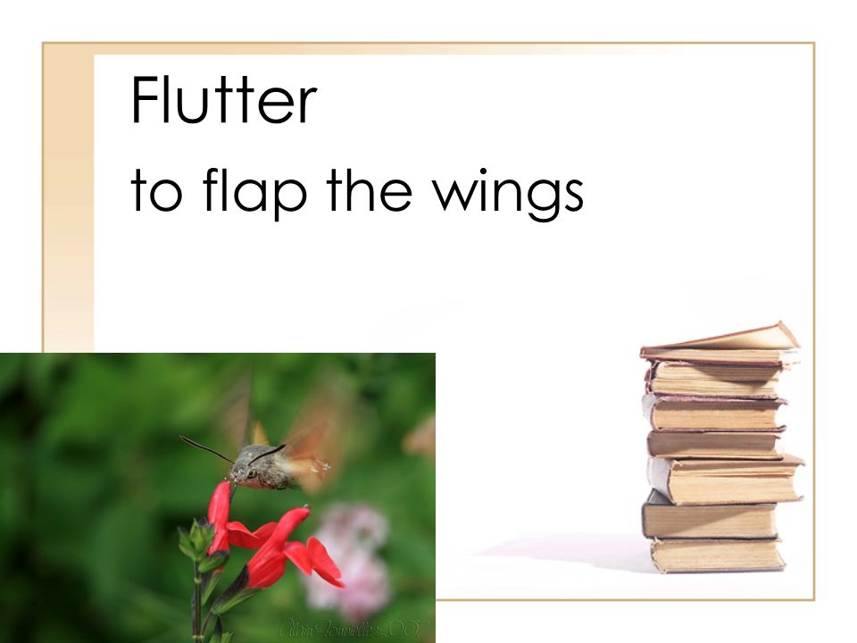 Flutter to flap the wings