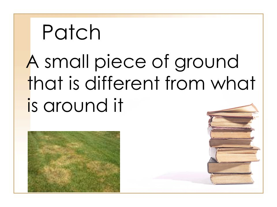 Patch A small piece of ground that is different from what is around it