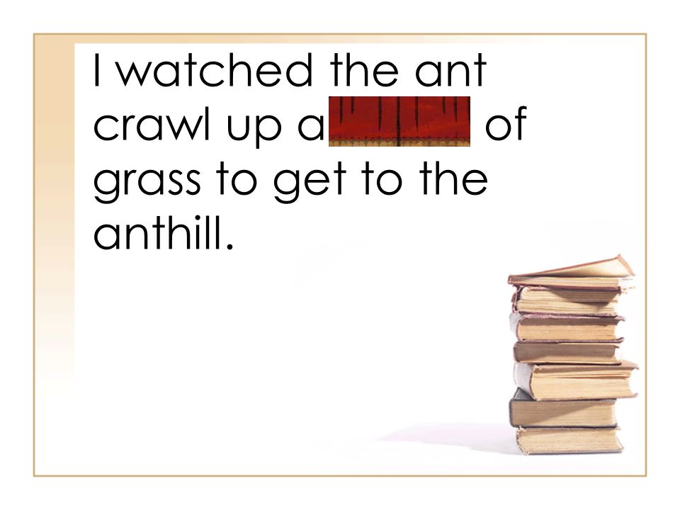 I watched the ant crawl up a blade of grass to get to the anthill.