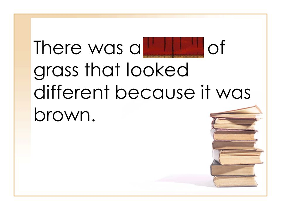 There was a patch of grass that looked different because it was brown.