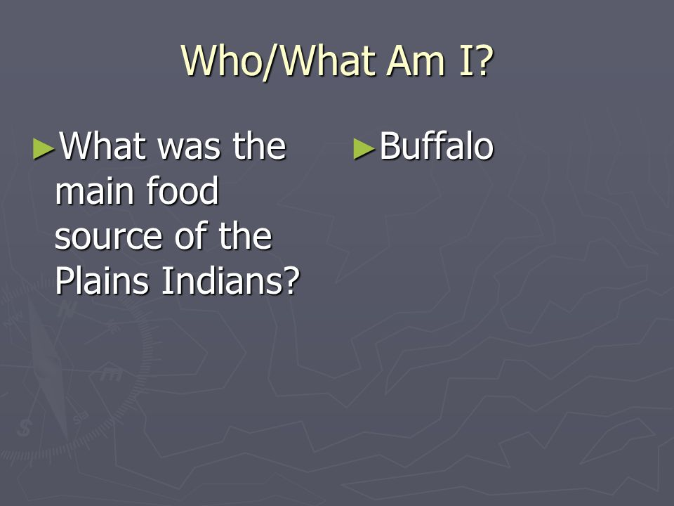 Who/What Am I What was the main food source of the Plains Indians