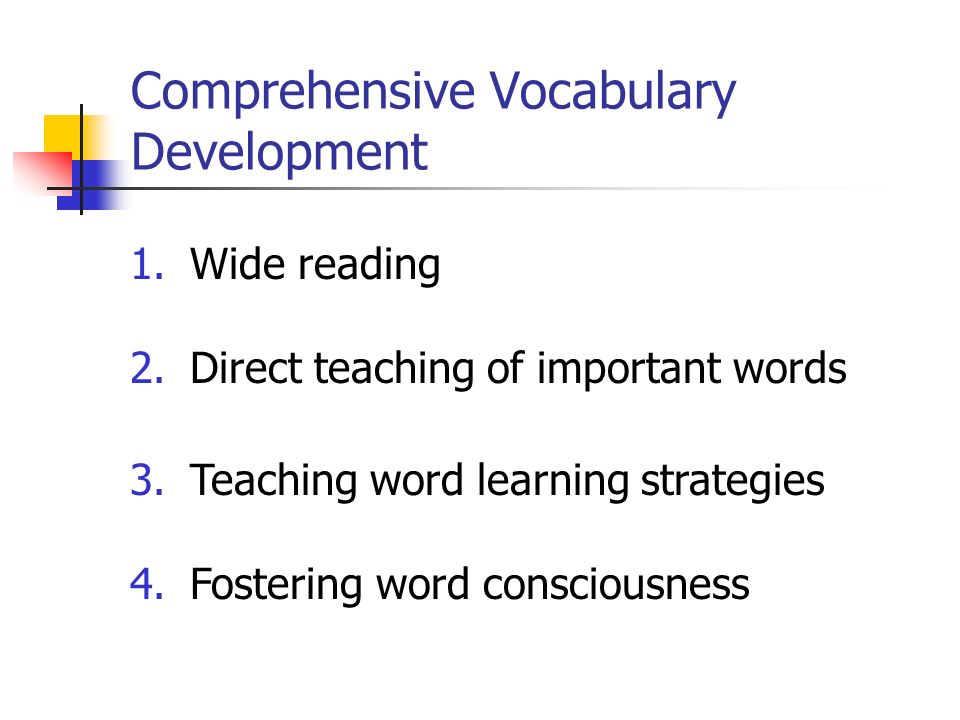 Comprehensive Vocabulary Development