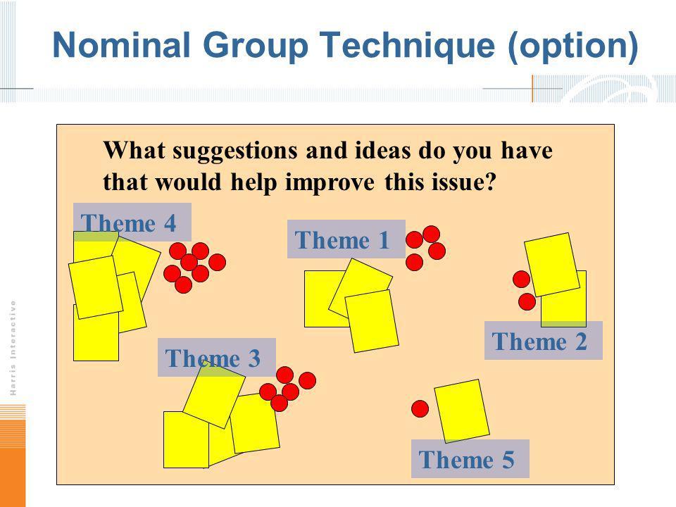 Nominal Group Technique (option)