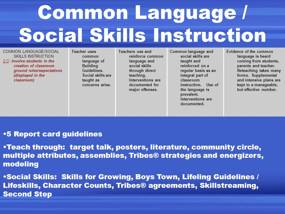 Common Language / Social Skills Instruction