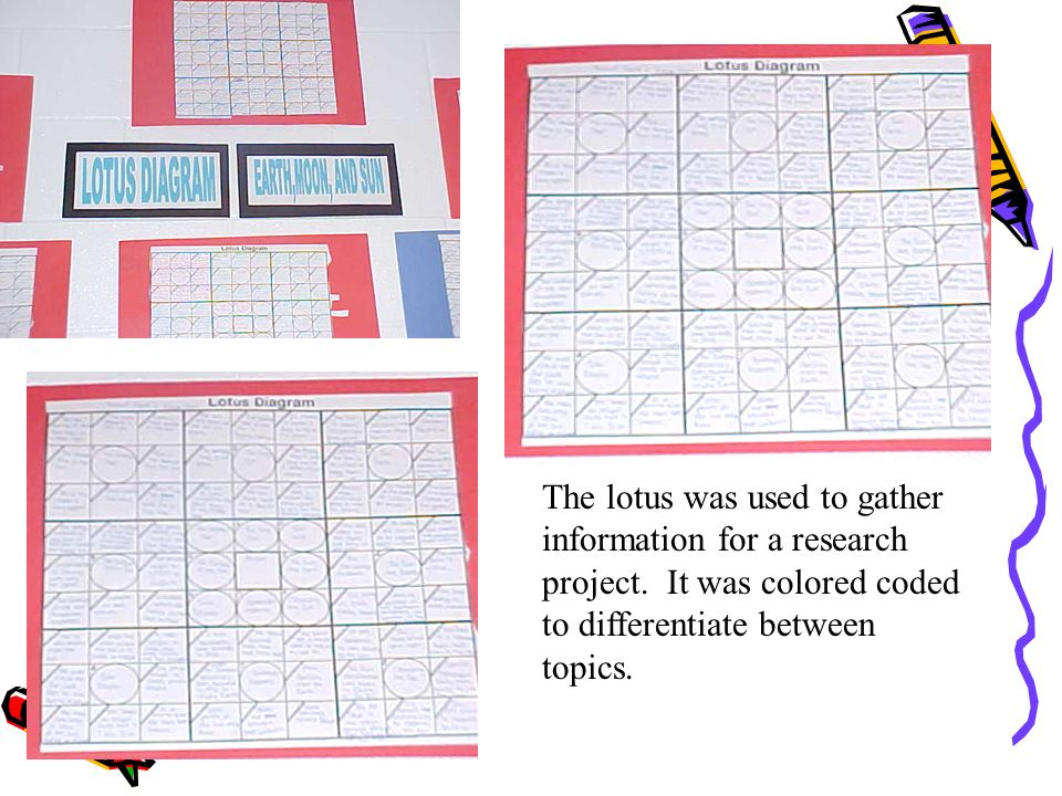 The lotus was used to gather information for a research project