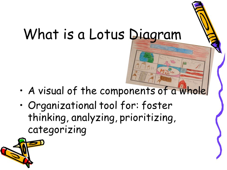 What is a Lotus Diagram A visual of the components of a whole